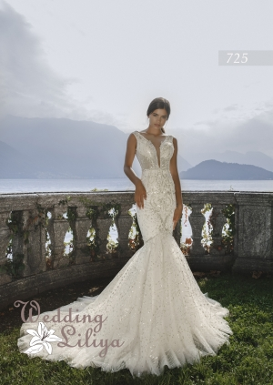 Wedding dress №725