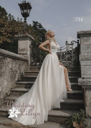Wedding dress №734