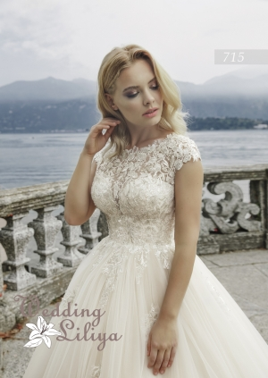 Wedding dress №715
