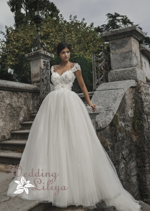 Wedding dress №730