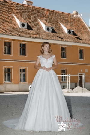 Wedding dress №650