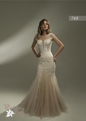 Wedding dress №748